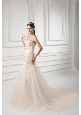 Champagne A-line Sweetheart Court Train Wedding Dress with Appliques