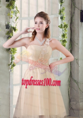 Popular A Line Appliques Bridesmaid Dress with One Shoulder