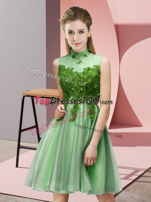 Exquisite Apple Green Empire High-neck Sleeveless Tulle Knee Length Lace Up Appliques Quinceanera Dama Dress