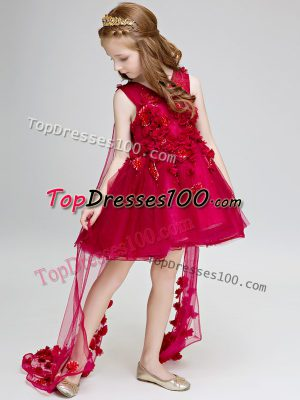 Wine Red Lace Up V-neck Hand Made Flower Flower Girl Dresses Tulle Sleeveless Watteau Train