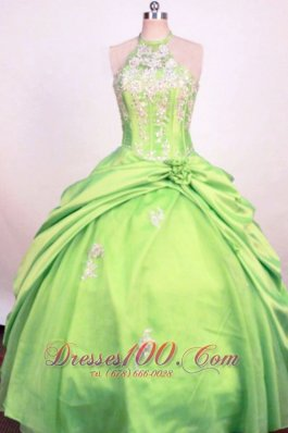 Fashionable Spring Green Ball Gown Little Girl Pageant Dress Halter Hand Made Flower Taffeta  Pageant Dresses