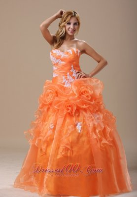 New Michigan Appliques Decorate Up Bodice Orange With Hand Made Flowers Floor-length For 2013 prom / Pageant Dress