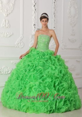 Popular Beautiful Green Quinceanera Dress Strapless Organza Beading Ball Gown