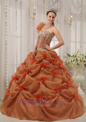 Popular Discount Rust Red Quinceanera Dress One Shoulder Organza Appliques Ball Gown