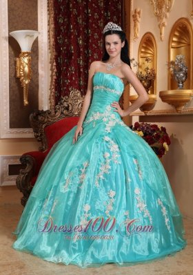 Discount Beautiful Quinceanera Dress Strapless Organza Appliques Ball Gown