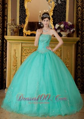 AffordableTurquoise Quinceanera Dress Strapless Organza Beading Ball Gown Plus Size