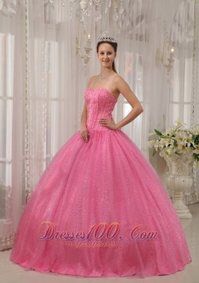 Classical Pink Quinceanera Dress Sweetheart Beading Ball Gown Plus Size