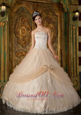 Informal Champagne Quinceanera Dress Strapless Appliques Tulle Ball Gown Pretty