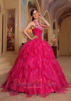 Romantic Hot Pink Quinceanera Dress Halter Organza Embroidery Ball Gown Pretty
