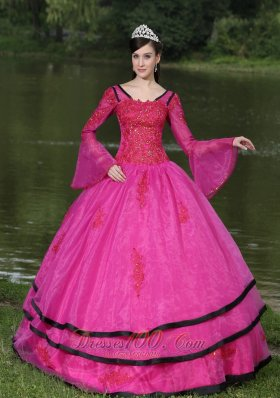 The Most Popular Long Sleeves Appliques Decorate Fushsia Quinceanera Dress With V-neck Pretty