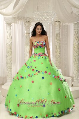 Spring Green Ball Gown 2013 Quninceaera Gown For Custom Made Appliques Decorate Bodice Pretty