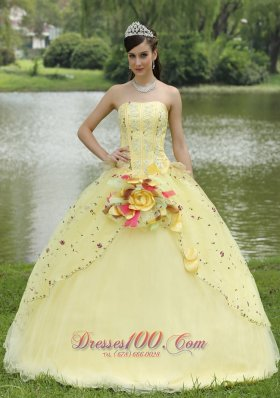 Appliques Embroidery and Hand Made Flowers Light Yellow Quinceanera Dress For 2013 Strapless Floor-length  for Sweet 16
