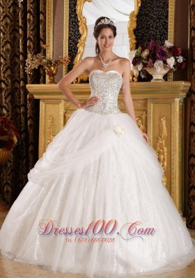 2013 Popular Quinceanera Dress Sweetheart Organza and Sequined Ball Gown