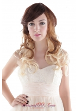 Long Mixed Color Synthetic Natural Look Curly Hair Wig