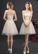Hot Sale Scoop Laced and Applique Champagne Prom Dress