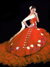 Taffeta Sleeveless Quinceanera Gowns Brush Train and Embroidery and Ruffles