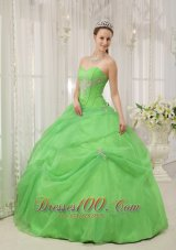 New Brand New Spring Green Quinceanera Dress Sweetheart Organza Appliques Ball Gown