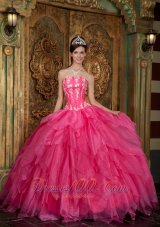 Popular Gorgeous Hot Pink Quinceanera Dress Strapless Appliques Organza Ball Gown
