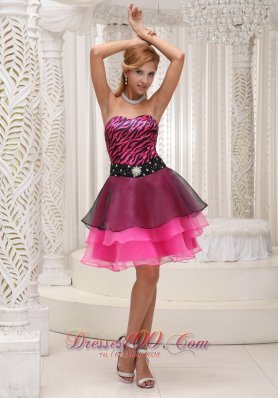 Hot Pink and Black Prom / Cocktail Dress For 2013 Zebra and Organza Beaded Decorate Wasit Mini-length  Under 100